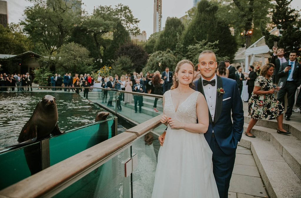 Wedding at Central Park Zoo